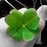 hechizos-de-amor-para-tener-buena-suerte